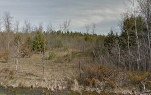 Vacant Land for sale in Kingston Ontario - 3213 Burbrook Road